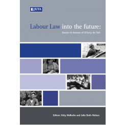 Labour Law into the Future